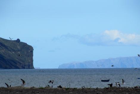 "<img src=""img_3749_web.jpg"" alt=""Funchal rugged waterfront"" />"