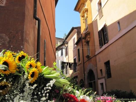 """<img src=""""img_2415.jpg"""" alt=""""Flowers Trastevere Rome Italy"""">"""