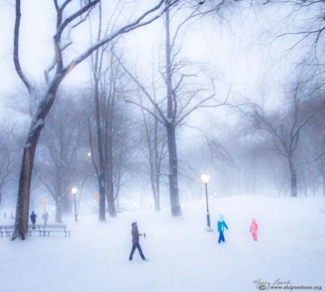 Central_Park_Blizzard_2015